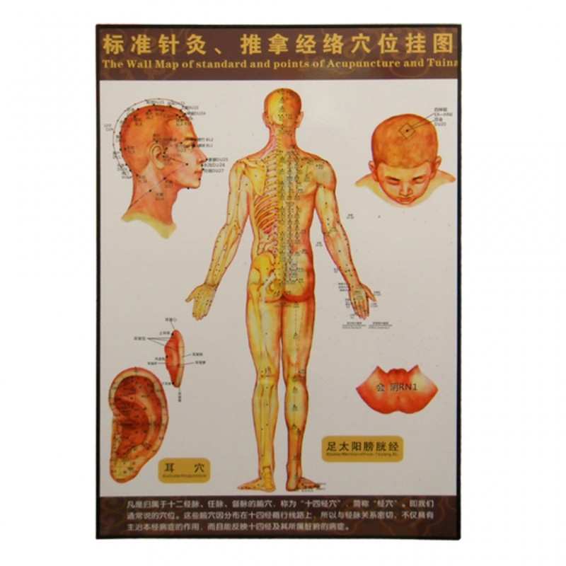 35201 Body Map Of Acupuncture Points